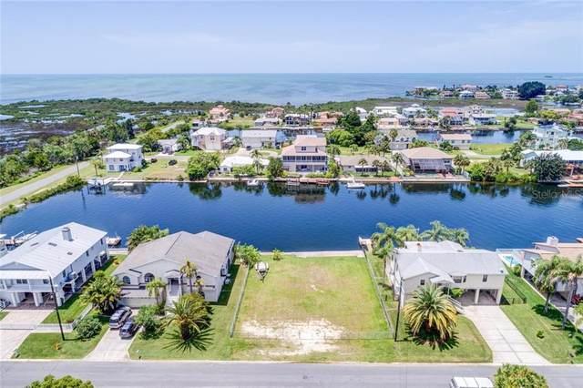 4123 Daisy Drive, Hernando Beach, FL 34607 (MLS #W7829649) :: Griffin Group