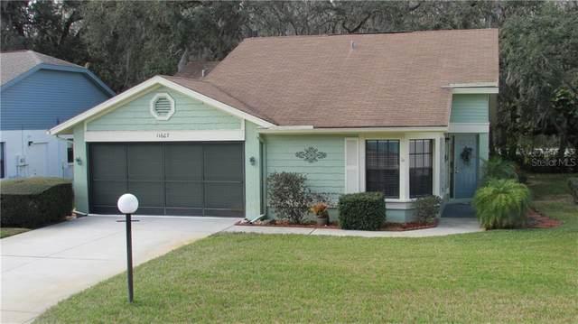 11607 Rose Tree Drive, New Port Richey, FL 34654 (MLS #W7829708) :: Premier Home Experts
