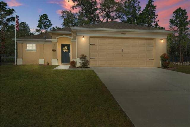 12325 Lark Sparrow Road, Weeki Wachee, FL 34614 (MLS #W7829757) :: Sarasota Property Group at NextHome Excellence