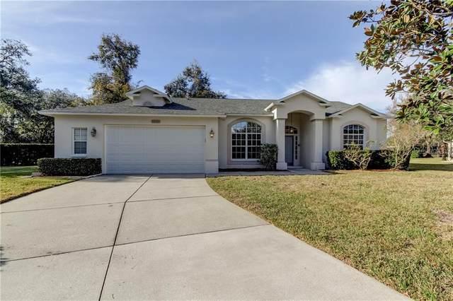 10301 Pineneedles Drive, New Port Richey, FL 34654 (MLS #W7829878) :: Dalton Wade Real Estate Group