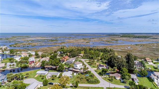 3463 Paragon Terrace, Hernando Beach, FL 34607 (MLS #W7829880) :: Key Classic Realty