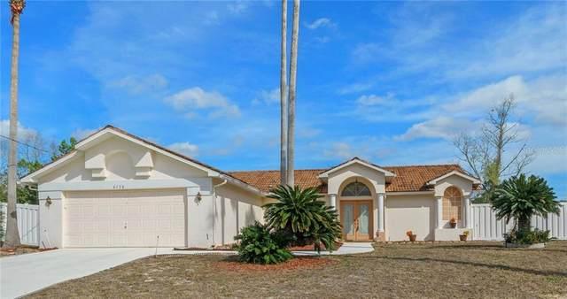 6130 Lyon Road, Spring Hill, FL 34606 (MLS #W7829886) :: Premier Home Experts