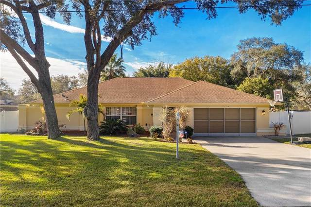 9084 Gallup Circle, Spring Hill, FL 34608 (MLS #W7829913) :: Prestige Home Realty