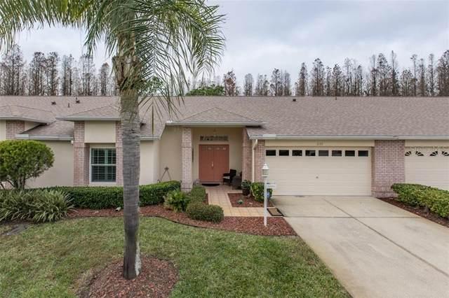 1133 Sweet Jasmine Drive, Trinity, FL 34655 (MLS #W7829921) :: Premium Properties Real Estate Services
