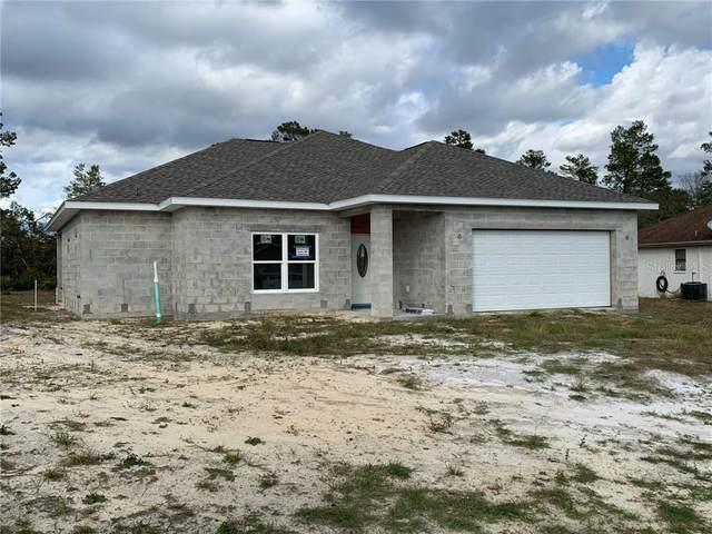 12387 Talpa Street, Spring Hill, FL 34608 (MLS #W7829952) :: Premier Home Experts