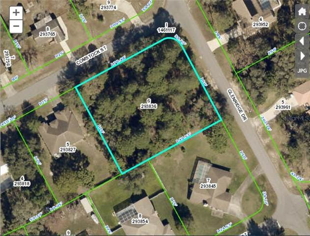 12354 Comstock Street, Spring Hill, FL 34609 (MLS #W7829960) :: Premier Home Experts