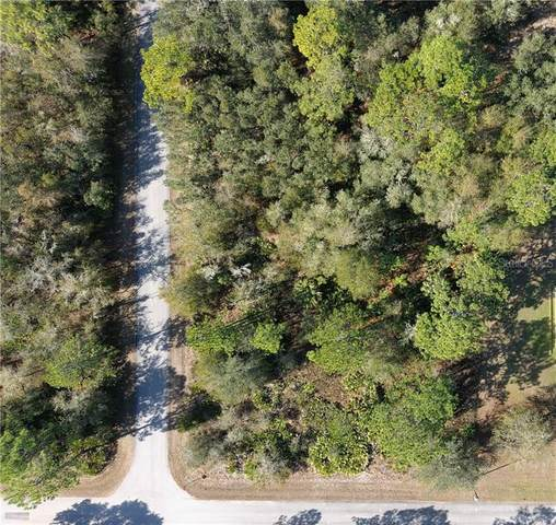 12047 W Apple Tree Place, Crystal River, FL 34428 (MLS #W7829962) :: Everlane Realty