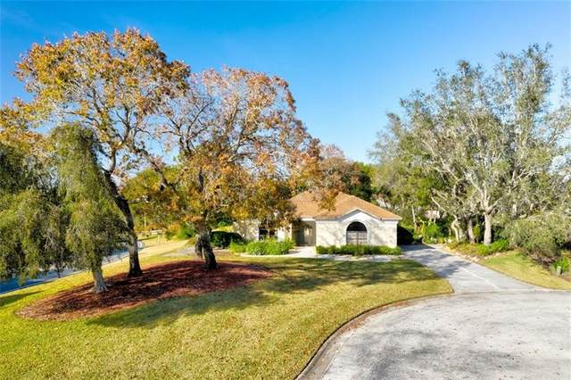 8451 Delta Court, Weeki Wachee, FL 34613 (MLS #W7829963) :: Prestige Home Realty