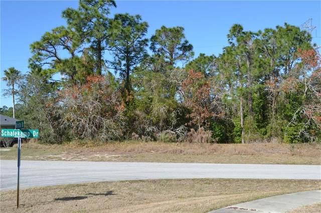 6139 Schalekamp Drive, Spring Hill, FL 34609 (MLS #W7830019) :: Griffin Group
