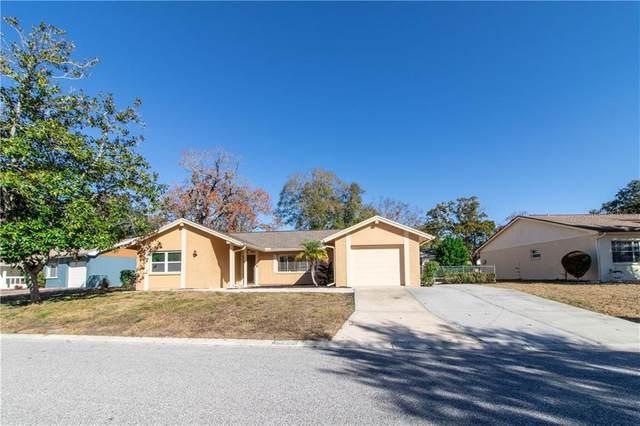 12902 Spicebox Way, Hudson, FL 34667 (MLS #W7830055) :: Team Borham at Keller Williams Realty