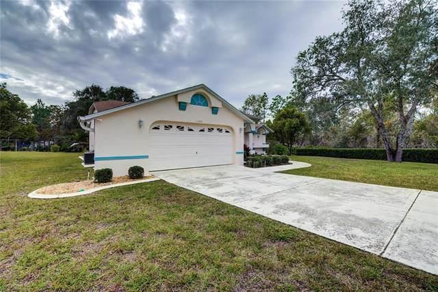 11248 Fool Duck Avenue, Weeki Wachee, FL 34613 (MLS #W7830059) :: Sarasota Home Specialists