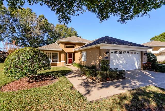 1121 Daleside Lane, New Port Richey, FL 34655 (MLS #W7830082) :: McConnell and Associates