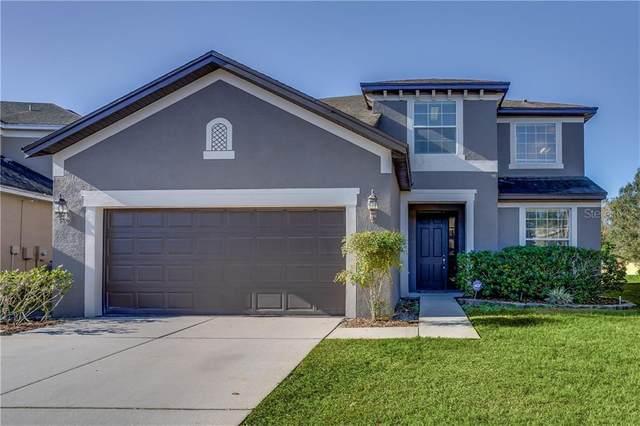 14143 Wake Robin Drive, Brooksville, FL 34604 (MLS #W7830089) :: Everlane Realty
