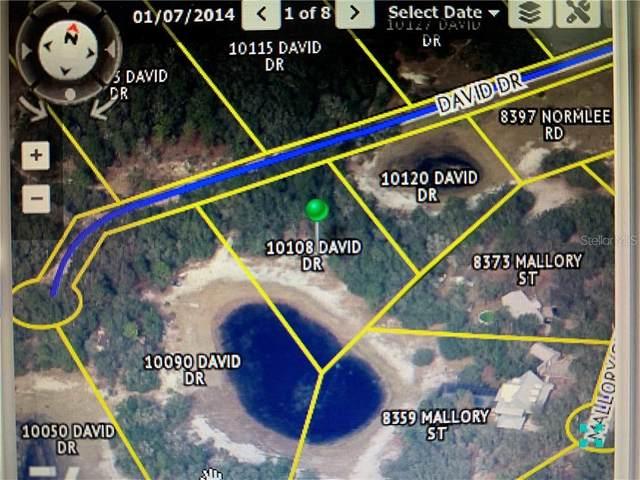 10090 David Drive, Weeki Wachee, FL 34613 (MLS #W7830096) :: Premier Home Experts