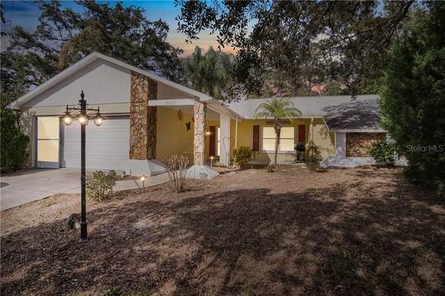 8061 Philatelic, Spring Hill, FL 34606 (MLS #W7830103) :: Premier Home Experts