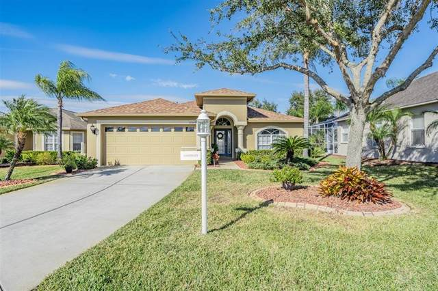 12107 Broadgreen Place, Trinity, FL 34655 (MLS #W7830157) :: Everlane Realty