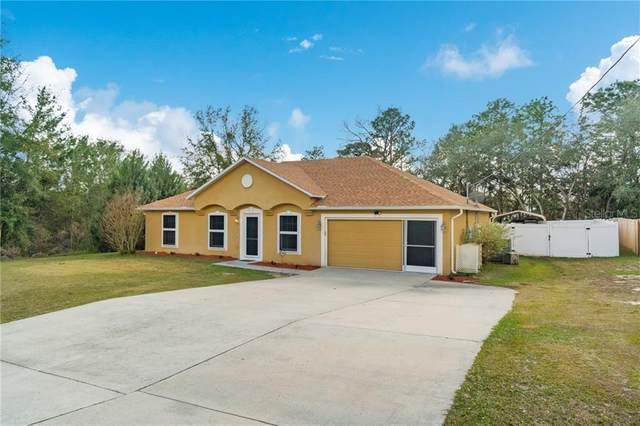 8280 N Ibsen Drive, Citrus Springs, FL 34433 (MLS #W7830187) :: The Duncan Duo Team