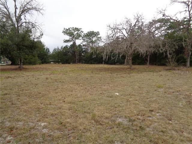 13101 Oakwood Drive, Hudson, FL 34669 (MLS #W7830200) :: Delta Realty, Int'l.