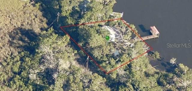 4652 The Salt River, Homosassa, FL 34448 (MLS #W7830218) :: Team Buky
