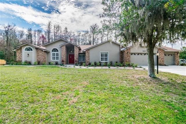 10060 Chip Lane, New Port Richey, FL 34654 (MLS #W7830228) :: Cartwright Realty