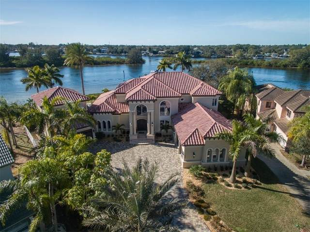 1141 Marina Drive, Tarpon Springs, FL 34689 (MLS #W7830234) :: The Lersch Group