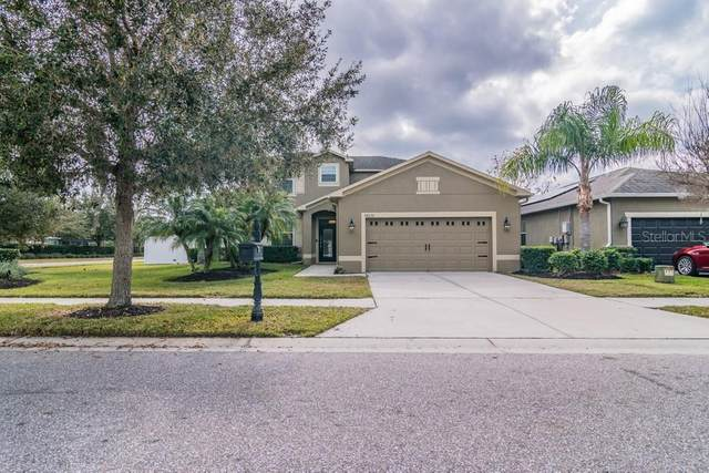 18636 Strombury Drive, Land O Lakes, FL 34638 (MLS #W7830242) :: Team Bohannon Keller Williams, Tampa Properties