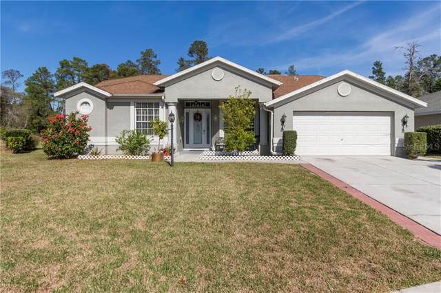 11401 Isleworth Court, New Port Richey, FL 34654 (MLS #W7830321) :: Realty One Group Skyline / The Rose Team