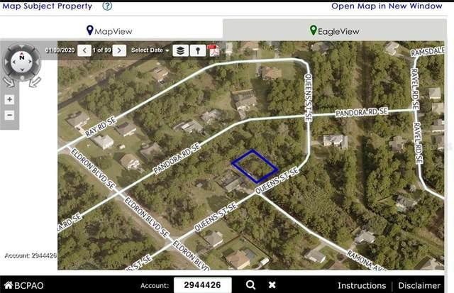 2312 Queens Street SE, Palm Bay, FL 32909 (MLS #W7830362) :: Everlane Realty