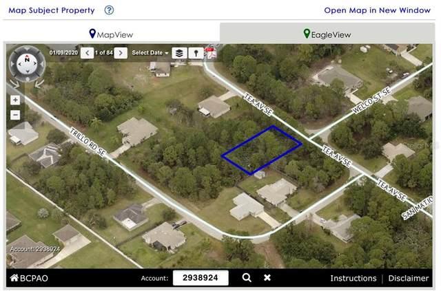 2178 Tea Avenue SE, Palm Bay, FL 32909 (MLS #W7830363) :: Armel Real Estate