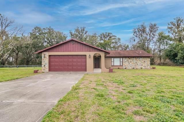 10334 Wallien Drive, Brooksville, FL 34601 (MLS #W7830468) :: Pepine Realty