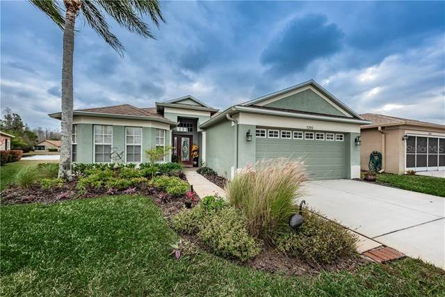1205 Dustan Place, Trinity, FL 34655 (MLS #W7830480) :: The Duncan Duo Team