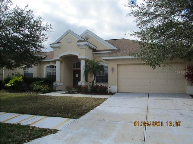 4479 Gevalia Drive, Brooksville, FL 34604 (MLS #W7830567) :: The Duncan Duo Team