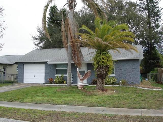 3550 Martell Street, New Port Richey, FL 34655 (MLS #W7830661) :: Delta Realty, Int'l.