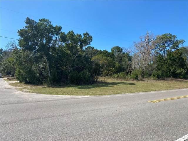 7189 Spruce Drive, Weeki Wachee, FL 34607 (MLS #W7830770) :: Premier Home Experts