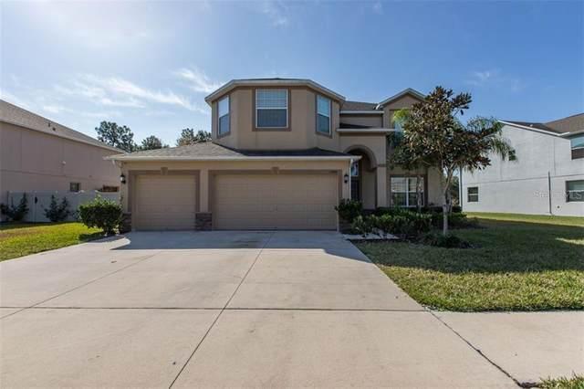 13846 Crest Lake Drive, Hudson, FL 34669 (MLS #W7830791) :: Pepine Realty