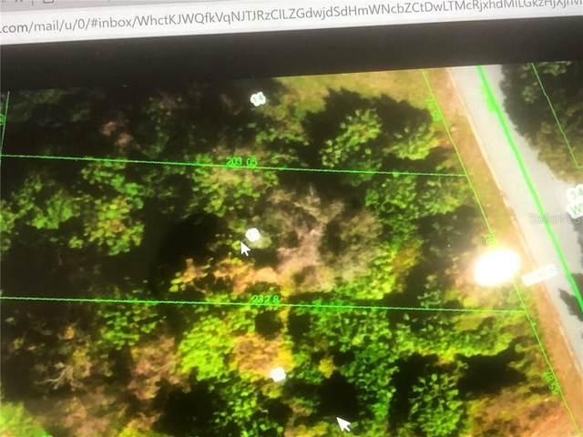 Whitby, Hudson, FL 34667 (MLS #W7830822) :: Everlane Realty