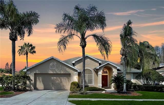 1331 Wild Pine Court, Trinity, FL 34655 (MLS #W7830975) :: Team Borham at Keller Williams Realty