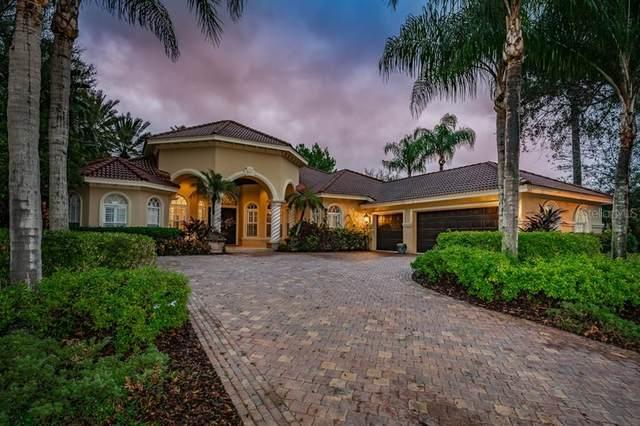 10712 Pontofino Circle, Trinity, FL 34655 (MLS #W7831016) :: Premier Home Experts