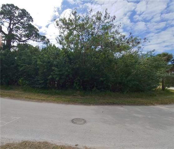 6920 Mccray Drive, Hudson, FL 34667 (MLS #W7831158) :: Zarghami Group