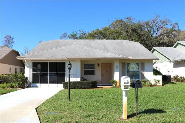 11529 Rose Tree Drive, New Port Richey, FL 34654 (MLS #W7831191) :: Key Classic Realty