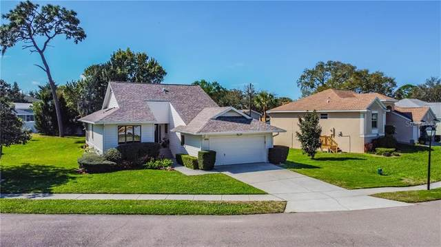 1023 Lake Avoca Place, Tarpon Springs, FL 34689 (MLS #W7831233) :: Realty One Group Skyline / The Rose Team