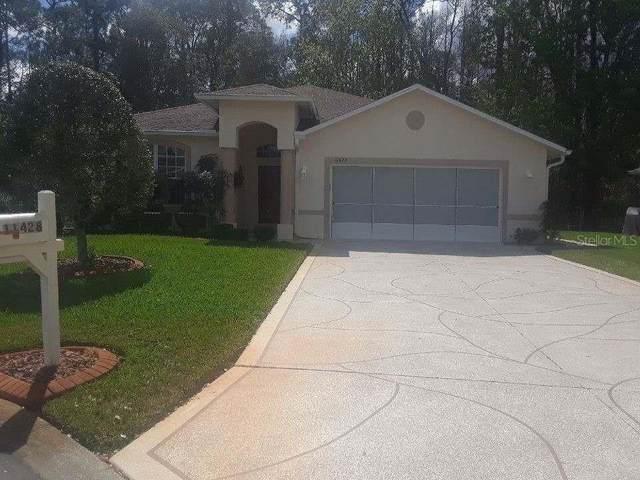 11428 Windstar Court, New Port Richey, FL 34654 (MLS #W7831249) :: Griffin Group
