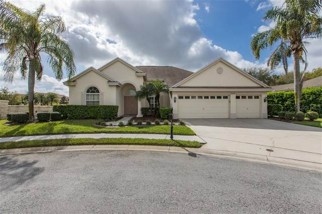 2009 Gold Dust Court, Trinity, FL 34655 (MLS #W7831257) :: EXIT King Realty
