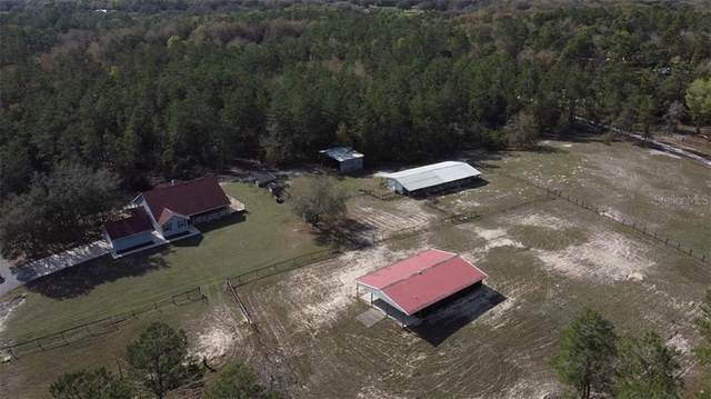 26201 Lost Horse Lane, Brooksville, FL 34601 (MLS #W7831262) :: Realty One Group Skyline / The Rose Team