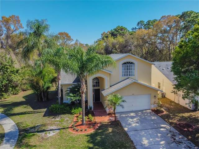 8103 Stonefield Way, Tampa, FL 33635 (MLS #W7831269) :: Medway Realty