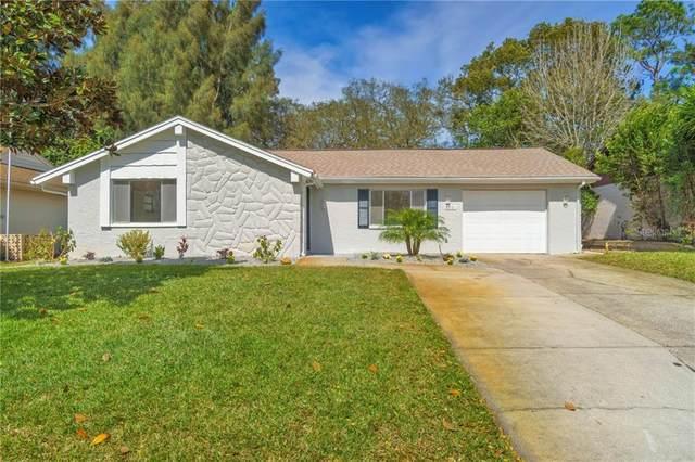8301 Mill Creek Lane, Hudson, FL 34667 (MLS #W7831276) :: Pepine Realty