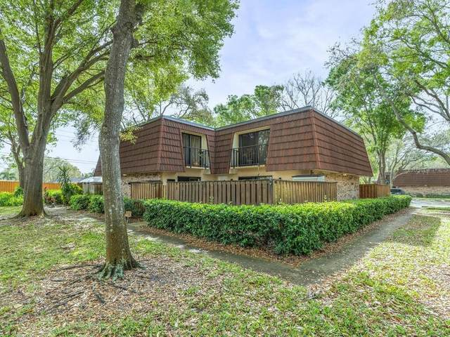 2749 5TH Court, Palm Harbor, FL 34684 (MLS #W7831284) :: Griffin Group