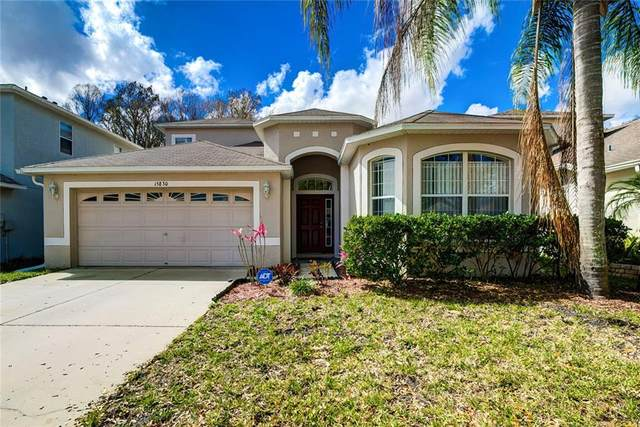 15830 Cedar Elm Terrace, Land O Lakes, FL 34638 (MLS #W7831290) :: Griffin Group