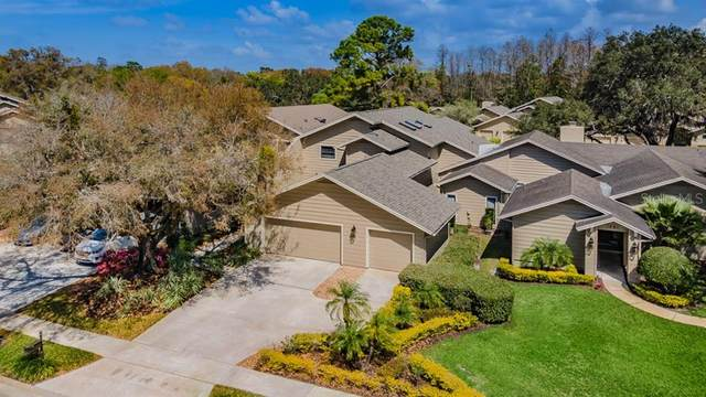 1087 Muirfield Court, Tarpon Springs, FL 34688 (MLS #W7831313) :: Delta Realty, Int'l.