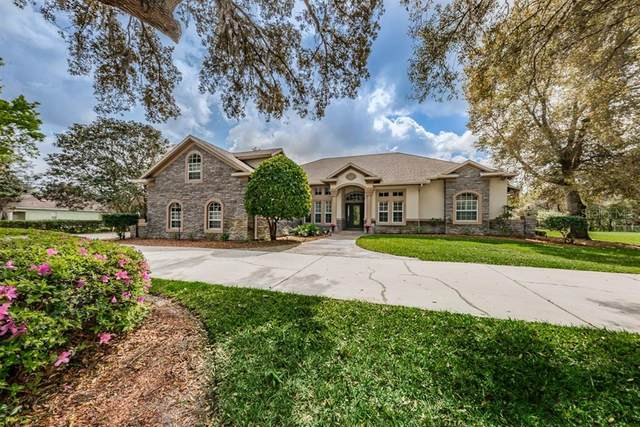 11248 Lakeview Drive, New Port Richey, FL 34654 (MLS #W7831314) :: Godwin Realty Group